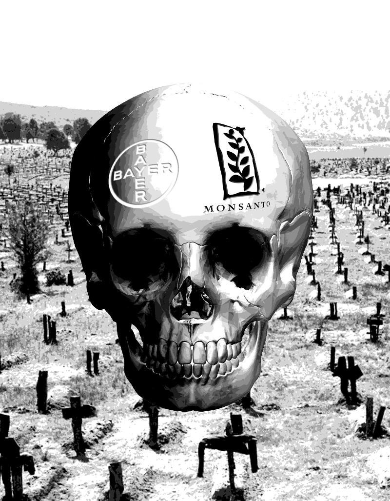 Fotomontage: Totenschädel mit Bayer- und Monstantoemblem über Friedhof.